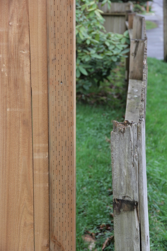 new fence, old fence