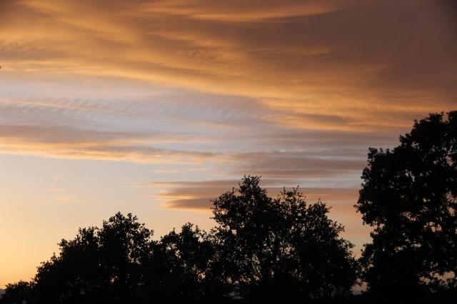 Sunset in Cottonwood2