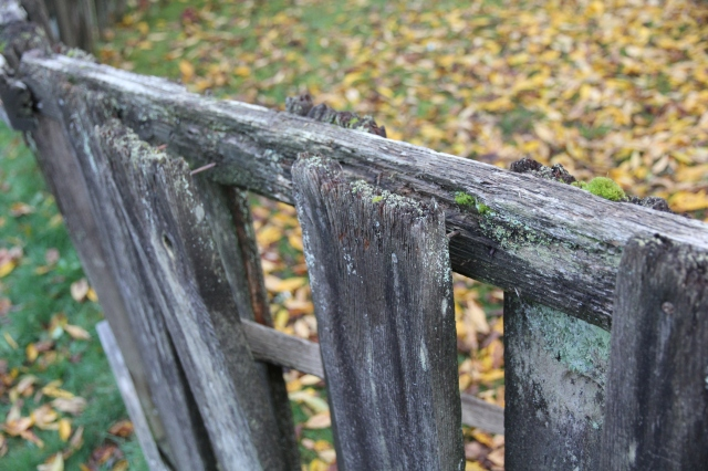 More old fence