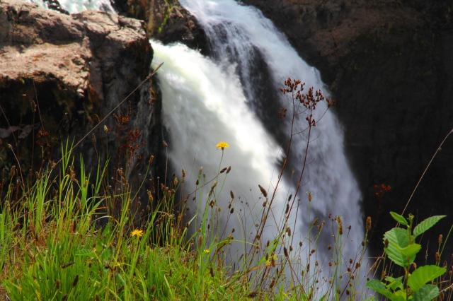 Sno Falls